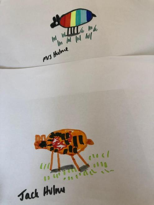 Jack's and Jack's mum's sheep drawings