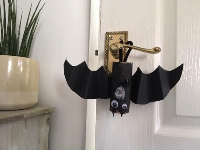 Theo's brilliant bat hanging upside down