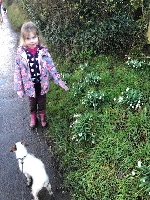 Finding snowdrops out on a walk