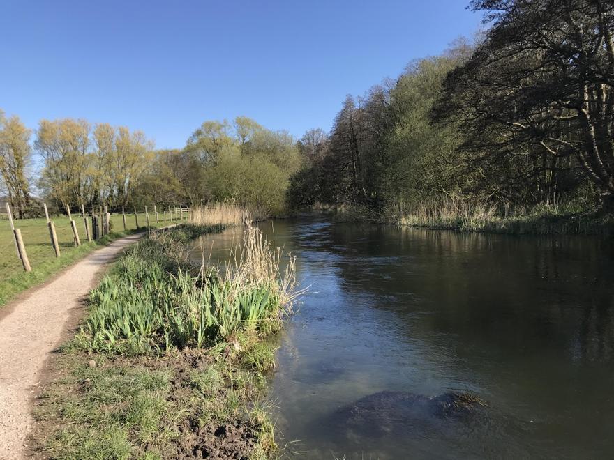 River Itchen