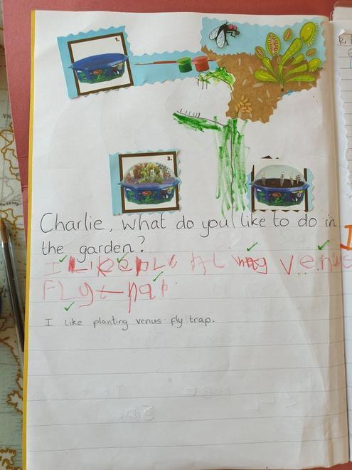 Charlie - venus fly trap writing