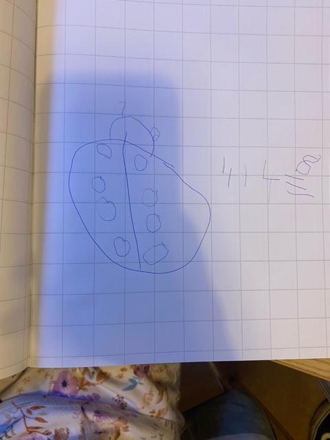 Grace's ladybird calculating