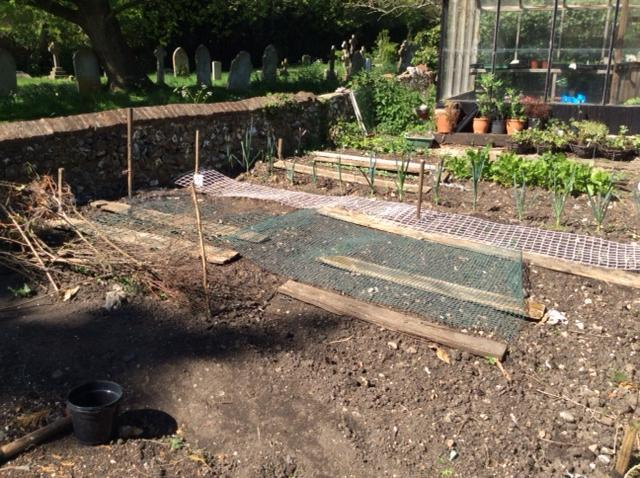 Mr Kimble's vegetable patch