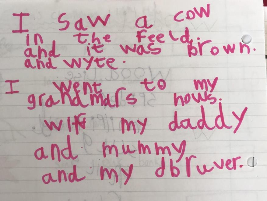 Emi's diary entry about a lovely day out