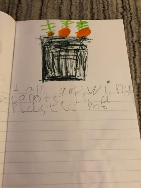 Nicole's carrot writing