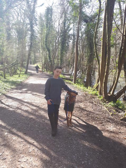 Luca taking his lovely dog for a walk.