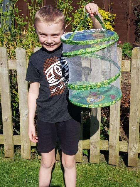 Charlie has found a Hawk moth caterpillar!