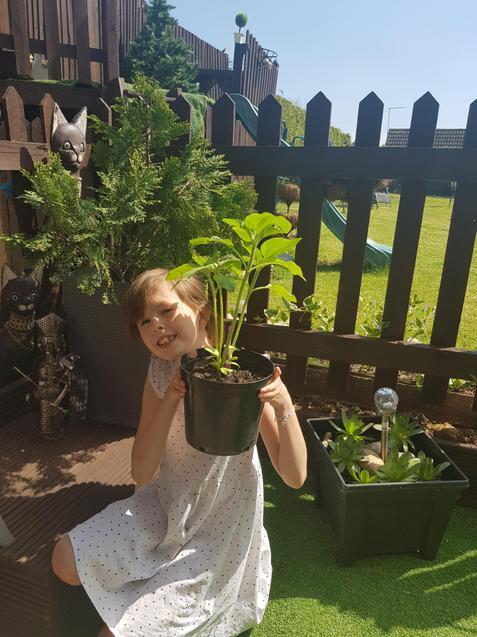 Nicole has been gardening