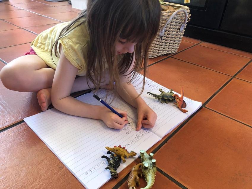 Fantastic dinousaur writing!