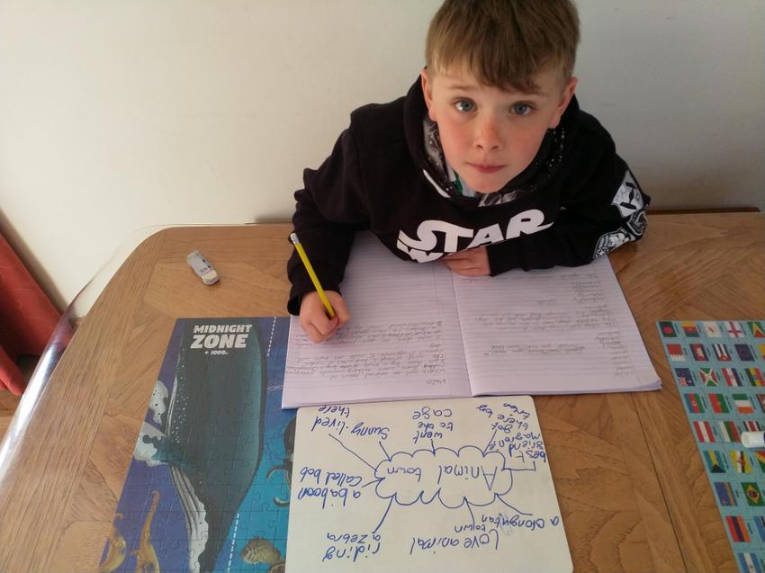 Ewan, hard at work writing.