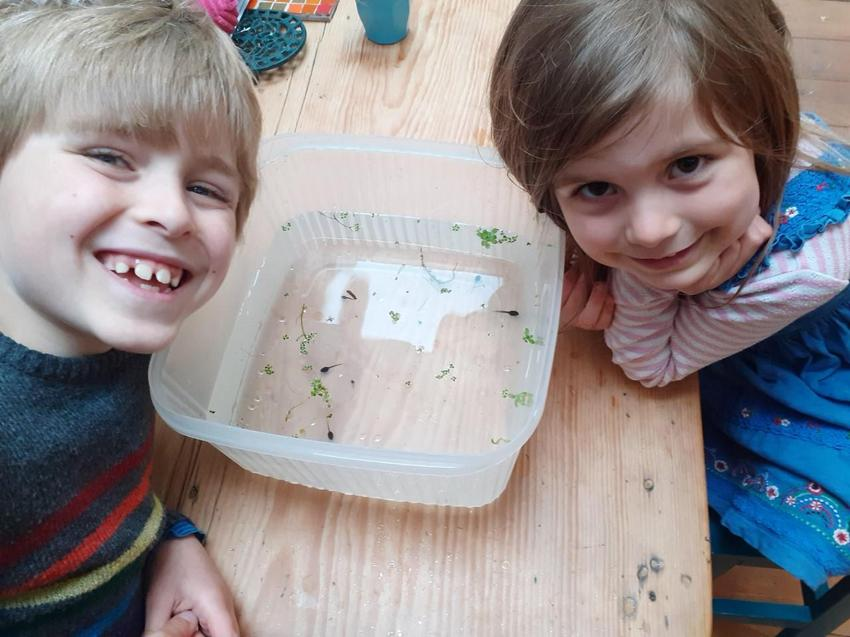Laurie and Martha observing their tadpoles