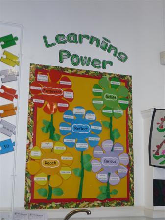 Kestrels class-learning powers