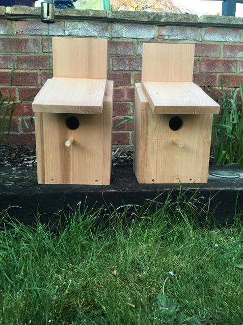 Harrison's finished bird boxes.