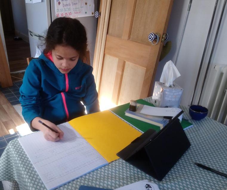 Izzy working hard on her maths