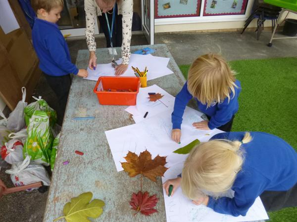 Doing some art with leaves collected...
