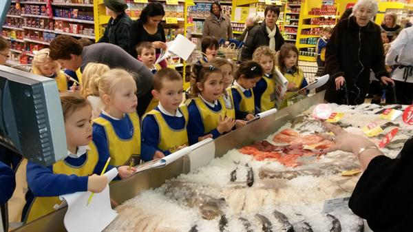 The fish counter.