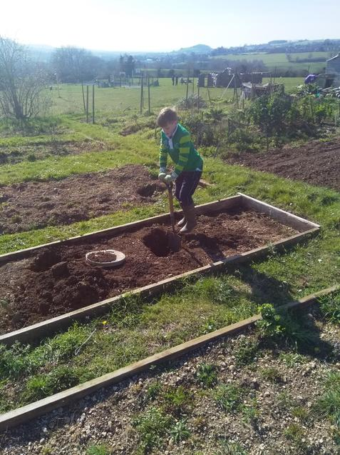 Vegetable planting for Nerys and Ewan today!