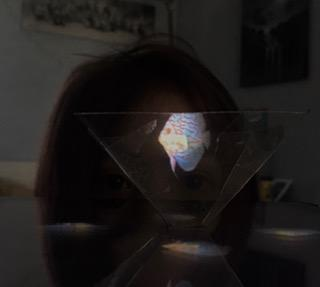 Phoebe has made a hologram projector!