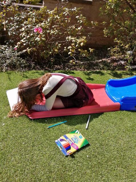 Lovely sunny learning!