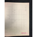 Amiyah's mapping work