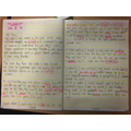 Writing a diary extract