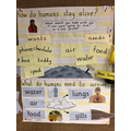 Our learning about what humans need to survive