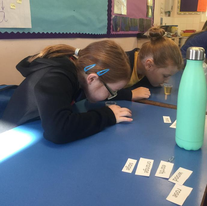 Libby and Amelia using their sense of smell!