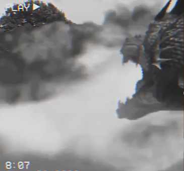 CCTV footage of the dragon attack in our school playground!