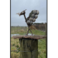 The winning entry. The iconic Liver Bird re-created with found, natural materials.