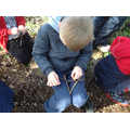 Fine motor skills - making a journey stick