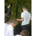 We all worked together to make mini beast habitats