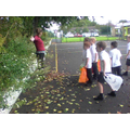 We looked at autumn leaves and collected some