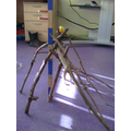 This structure was 50cm tall!