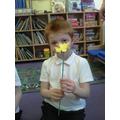 I made a small sunflower