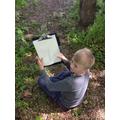 Wild art sketching