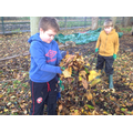Make leaf piles for hedgehogs