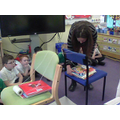 Mrs Stokes built a suspension bridge!