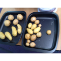 Field to Fork: our potatoes 5 ways