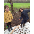 Outdoor maths counting to 20