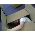 I'm a jack-in-the-box!