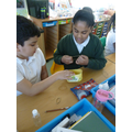Learning about the orchestra. Making string instruments.
