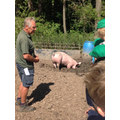 Blakenhall Farm visit 2nd July 2018