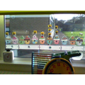 Look at our lovely display