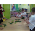 We sorted the leaves