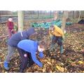 Make leaf piles for hedgehogs