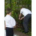 Here we are making our mini beast habitats