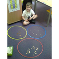 All my coins are sorted correctly!