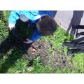 We put the soil back