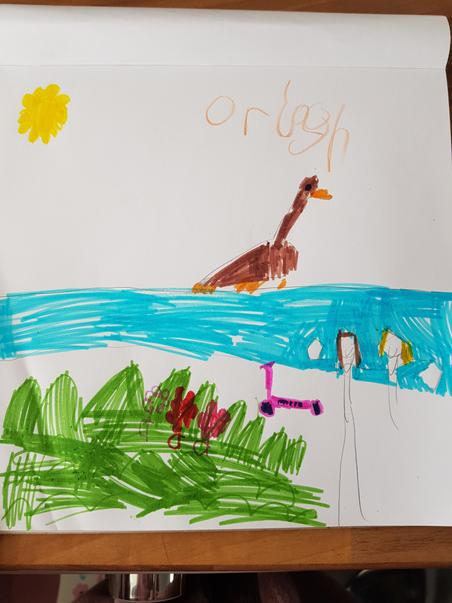 Orlagh's picture of feeding the geese