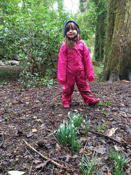 Scarlett has found snowdrops